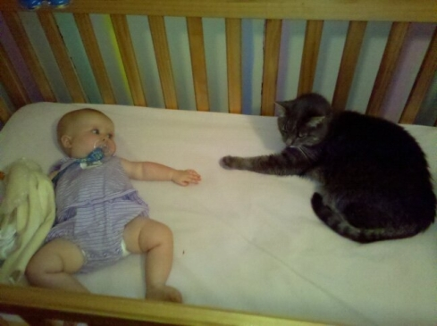 "Baby K and Gray Cat, who wins the award for ""Most Years Sleeping in a Crib."""
